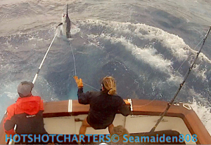 350 black marlin