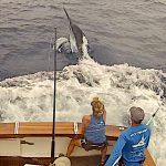 fishing for giants