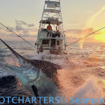 Drone Footage on HotShot Charters