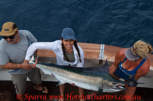 www.hotshotcharters.com fishing black marlin
