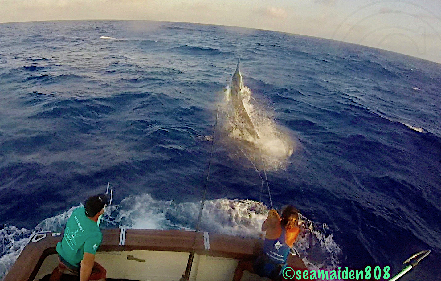 Fishing for Black Marlin