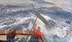 Family owned Hotshot Charters